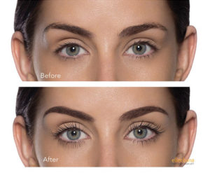 julia j spa - lash lifts